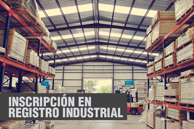 Tecmo Proyectos Técnicos Registro Industrial